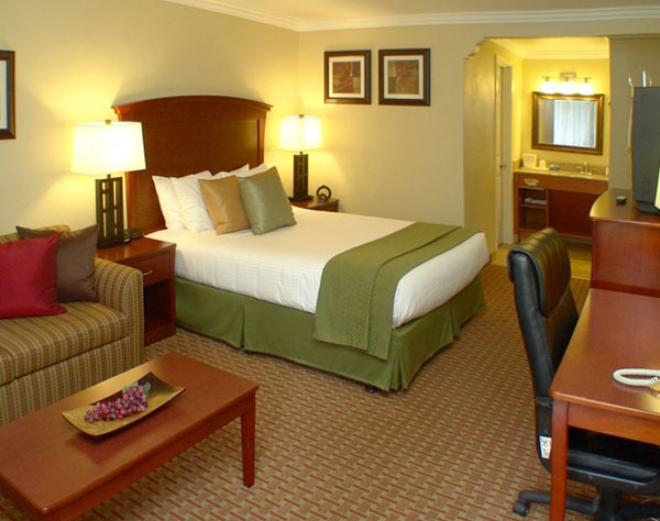 Quality Inn & Suites Santa Cruz Mountains, Ben Lomond Single Queen
