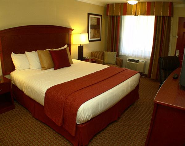 Single King at Quality Inn & Suites Santa Cruz Mountains, Ben Lomond